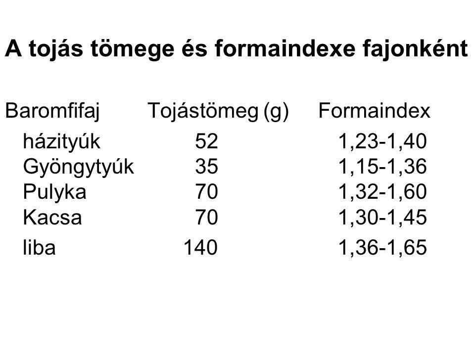A tojás tömege és formaindexe fajonként BaromfifajTojástömeg (g) Formaindex házityúk521,23-1,40 Gyöngytyúk351,15-1,36 Pulyka701,32-1,60 Kacsa701,30-1,45 liba 1401,36-1,65