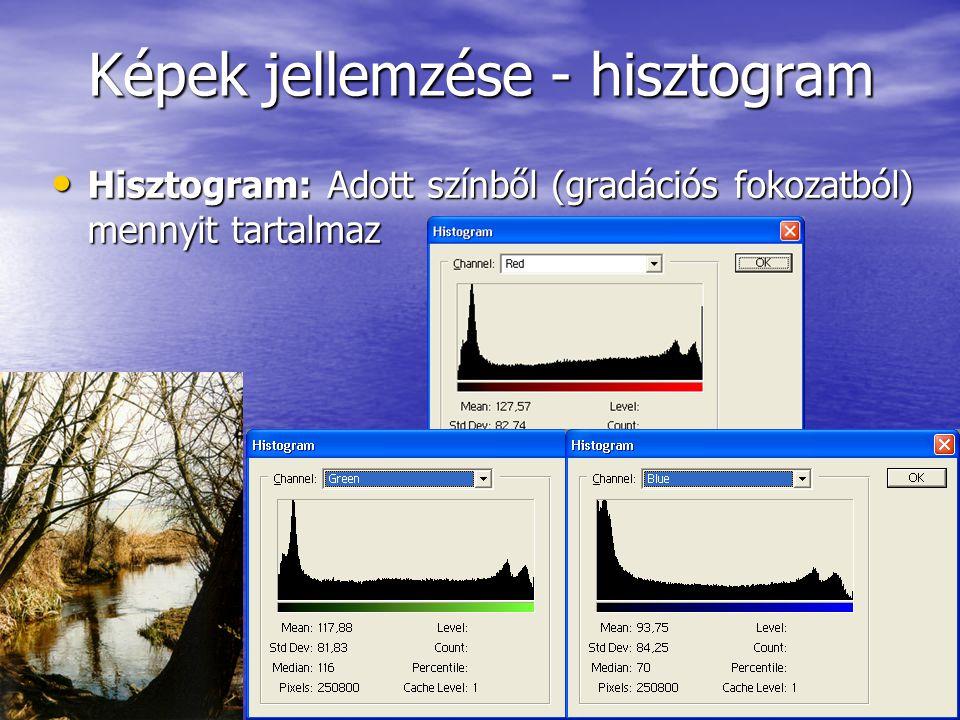 Videoállományok tömörítése • AVI (Audio Video Interleaved): –Kép és hanginformáció egymás után –Fejléccel rendelkezik, ami megmutatja, hogy milyen tömörítési eljárást használtunk –Szükséges a lejátszáshoz egy megfelelő dekoder • M-JPEG (Motion JPEG) –Az egyes képkockákat JPEG eljárással kódolják –A képek közötti kapcsolatokat nem veszik figyelembe