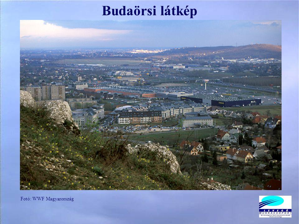 Budaörsi látkép Fotó: WWF Magyarország