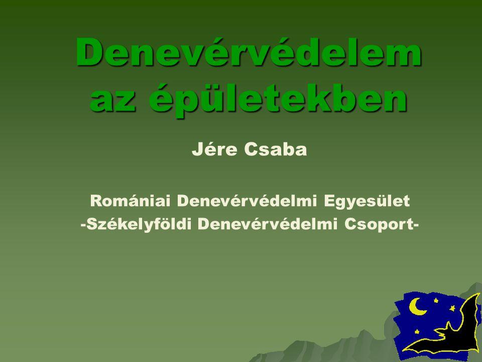Denevérvédelem az épületekben Jére Csaba Romániai Denevérvédelmi Egyesület -Székelyföldi Denevérvédelmi Csoport-
