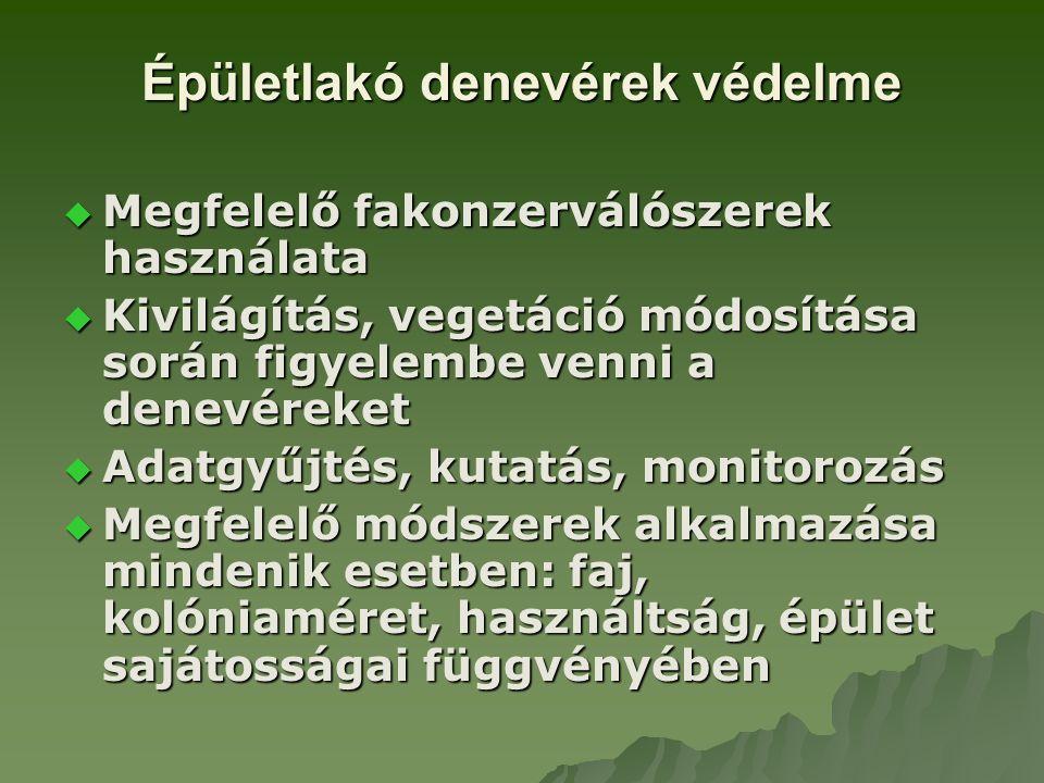 Épületlakó denevérek védelme  Megfelelő fakonzerválószerek használata  Kivilágítás, vegetáció módosítása során figyelembe venni a denevéreket  Adat