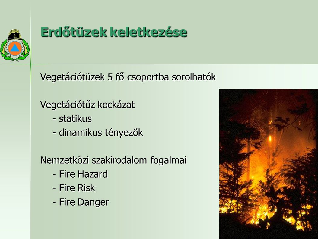 Erdőtüzek keletkezése Vegetációtüzek 5 fő csoportba sorolhatók Vegetációtűz kockázat - statikus - dinamikus tényezők Nemzetközi szakirodalom fogalmai