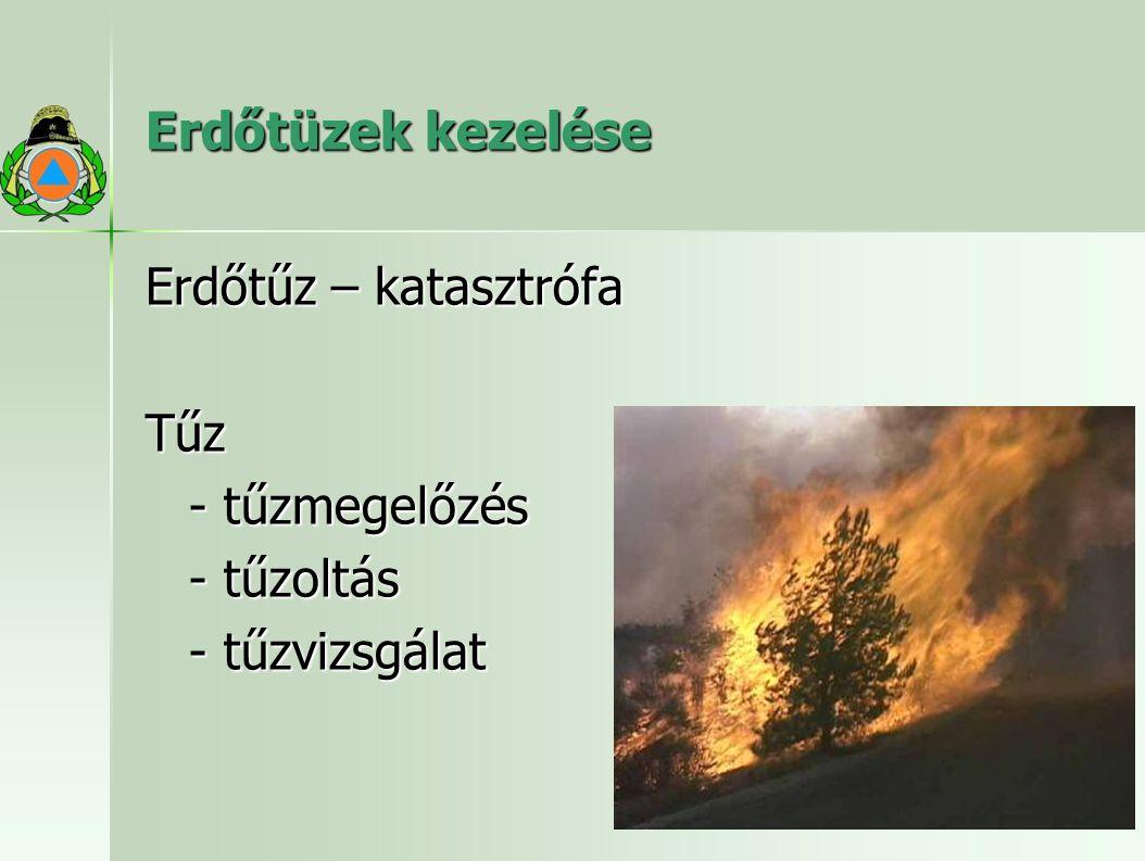 Erdőtüzek kezelése Erdőtűz – katasztrófa Tűz - tűzmegelőzés - tűzoltás - tűzvizsgálat