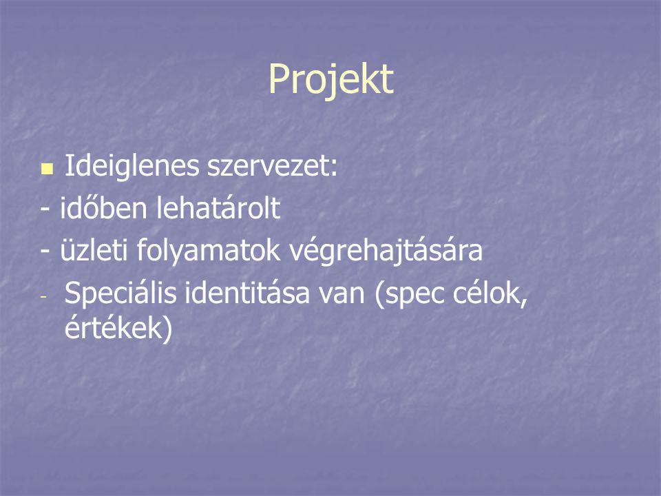 Projekt   Ideiglenes szervezet: - időben lehatárolt - üzleti folyamatok végrehajtására - - Speciális identitása van (spec célok, értékek)