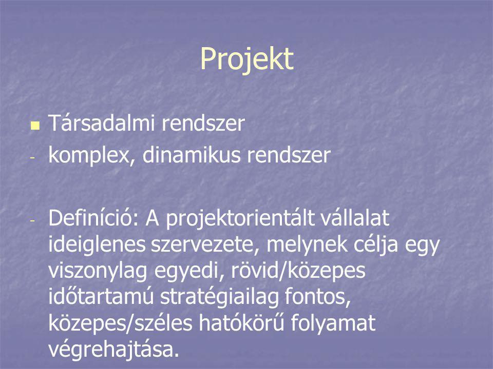 Projekt   Társadalmi rendszer - - komplex, dinamikus rendszer - - Definíció: A projektorientált vállalat ideiglenes szervezete, melynek célja egy vi