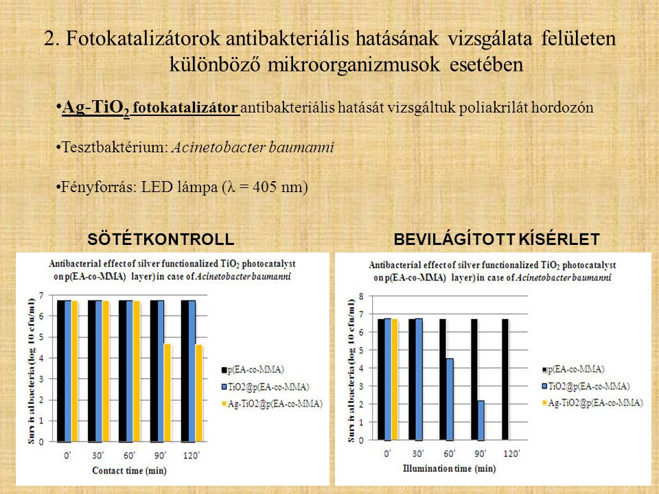 2. Fotokatalizátorok antibakteriális hatásának vizsgálata felületen különböző mikroorganizmusok esetében • Ag-TiO 2 fotokatalizátor antibakteriális ha