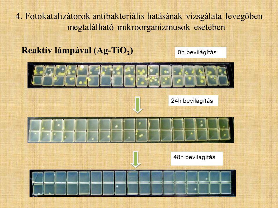 24h bevilágítás 48h bevilágítás 0h bevilágítás Reaktív lámpával (Ag-TiO 2 ) 4. Fotokatalizátorok antibakteriális hatásának vizsgálata levegőben megtal