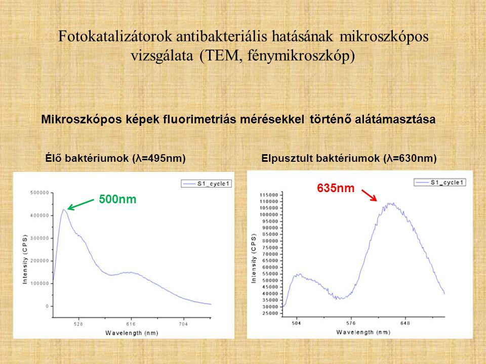Fotokatalizátorok antibakteriális hatásának mikroszkópos vizsgálata (TEM, fénymikroszkóp) Élő baktériumok (λ=495nm)Elpusztult baktériumok (λ=630nm) Mi