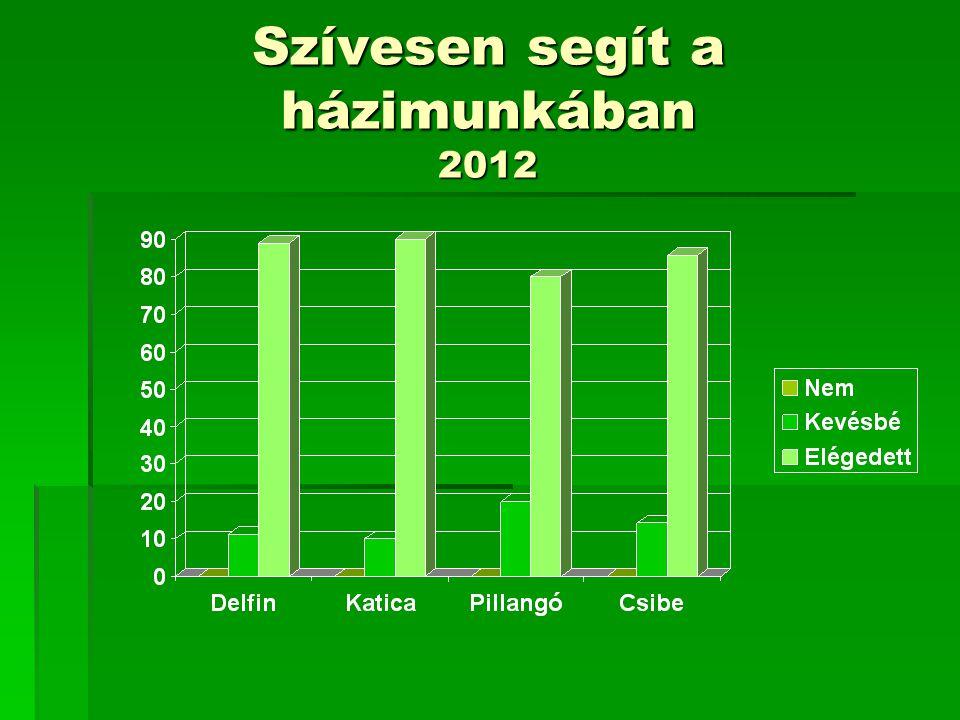 Szívesen segít a házimunkában 2012