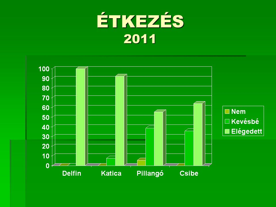 Elégedett volt-e a tájékoztatással? 2012
