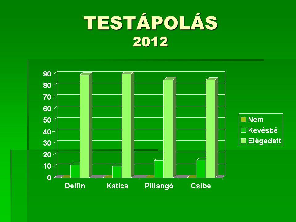 KÖRNYEZETÜK RENDJÉNEK TISZTÁNTARTÁSA 2011