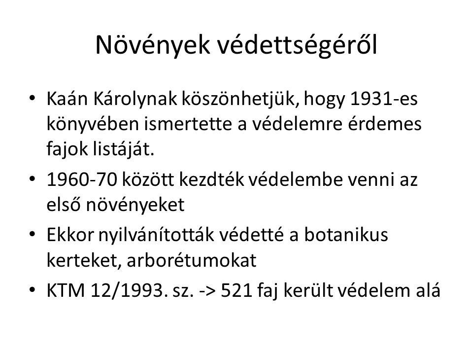 Növények védettségéről • Kaán Károlynak köszönhetjük, hogy 1931-es könyvében ismertette a védelemre érdemes fajok listáját. • 1960-70 között kezdték v