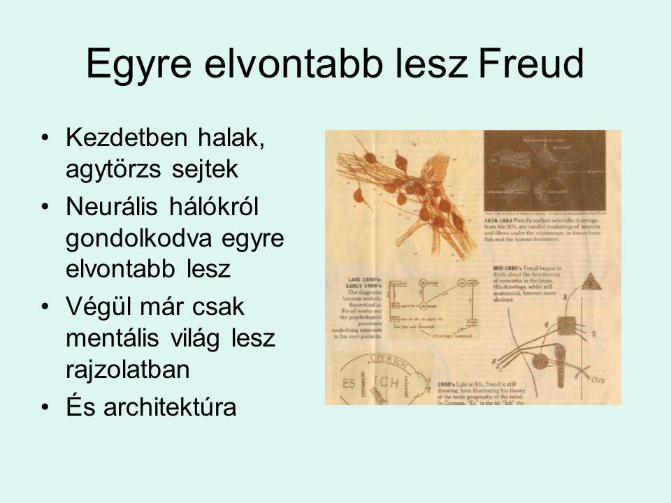 Egyre elvontabb lesz Freud •Kezdetben halak, agytörzs sejtek •Neurális hálókról gondolkodva egyre elvontabb lesz •Végül már csak mentális világ lesz r