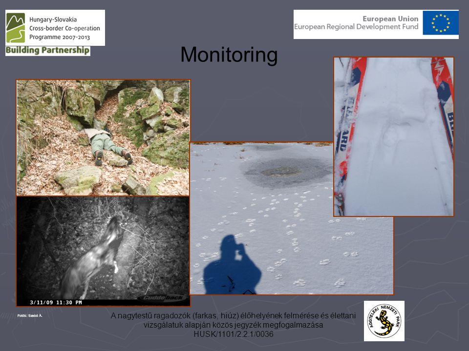 A nagytestű ragadozók (farkas, hiúz) élőhelyének felmérése és élettani vizsgálatuk alapján közös jegyzék megfogalmazása HUSK/1101/2.2.1/0036 Monitorin