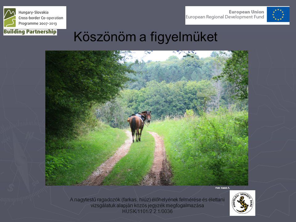 A nagytestű ragadozók (farkas, hiúz) élőhelyének felmérése és élettani vizsgálatuk alapján közös jegyzék megfogalmazása HUSK/1101/2.2.1/0036 Köszönöm