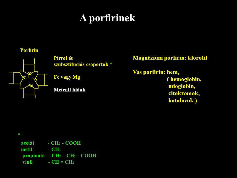 A porfirinek Porfirin N N N N Pirrol és szubsztituciós csoportok * Fe vagy Mg Metenil hidak Magnézium porfirin: klorofil Vas porfirin: hem, ( hemoglob