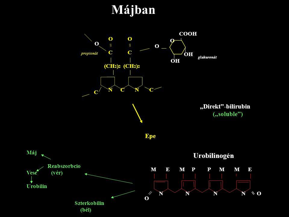 "Májban COOH O O O C (CH 2 ) 2 = O C (CH 2 ) 2 = O NCNC propionát glukuronát Epe ""Direkt""-bilirubin (""soluble"") Máj Reabszorbcio Vese (vér) Urobilin M"