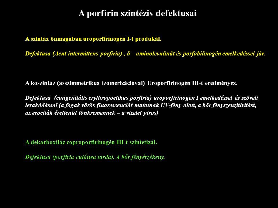 A porfirin szintézis defektusai A szintáz önmagában uroporfirinogén I-t produkál. Defektusa (Acut intermittens porfiria), δ – aminolevulinát és porfob
