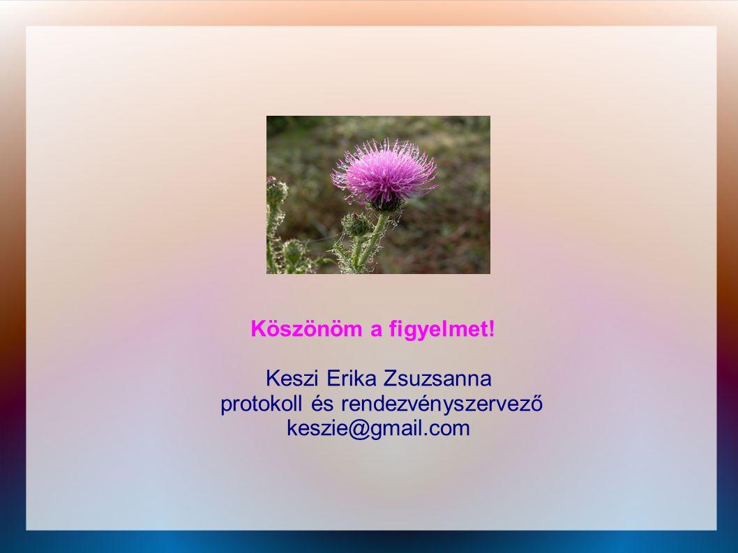 Köszönöm a figyelmet! Keszi Erika Zsuzsanna protokoll és rendezvényszervező keszie@gmail.com