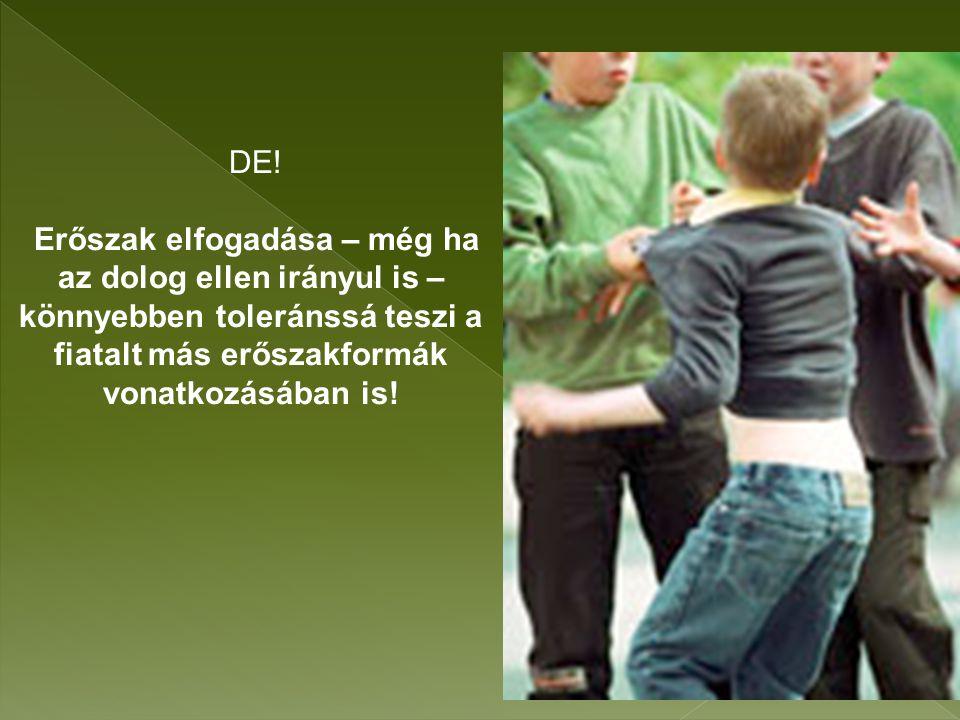 DE! Erőszak elfogadása – még ha az dolog ellen irányul is – könnyebben toleránssá teszi a fiatalt más erőszakformák vonatkozásában is!
