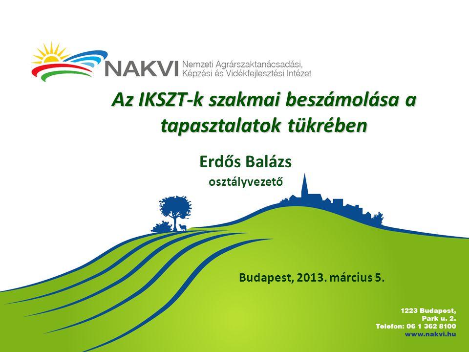 Az IKSZT-k szakmai beszámolása a tapasztalatok tükrében Budapest, 2013.