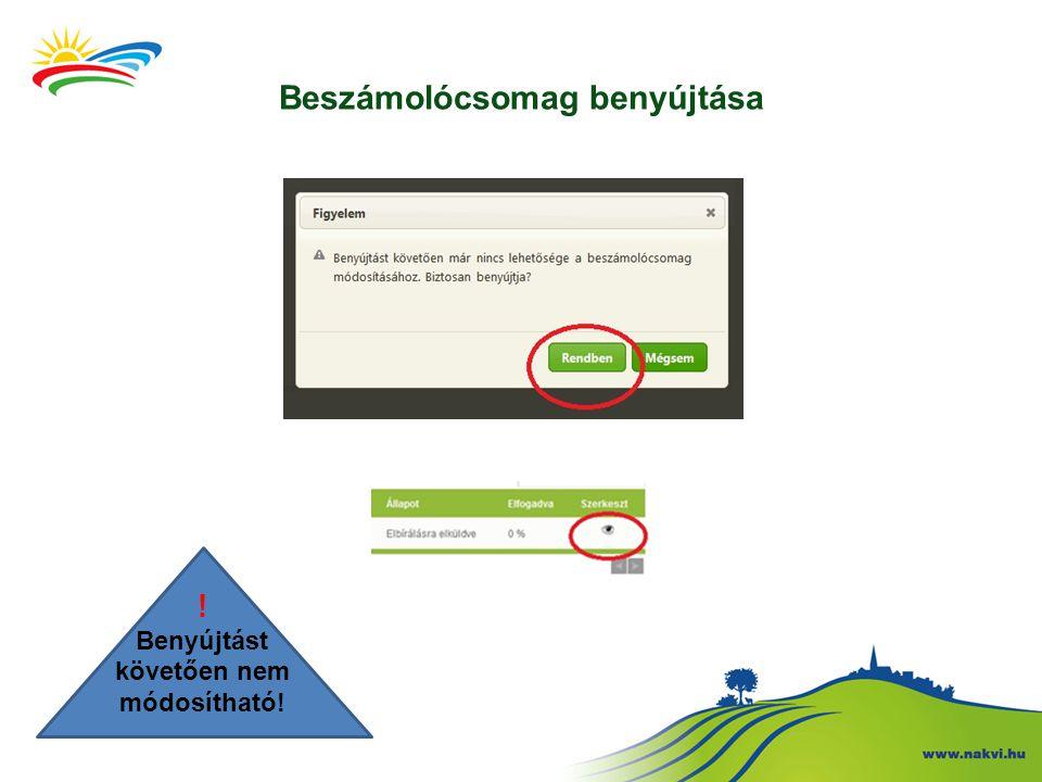 Beszámolócsomag benyújtása ! Benyújtást követően nem módosítható!