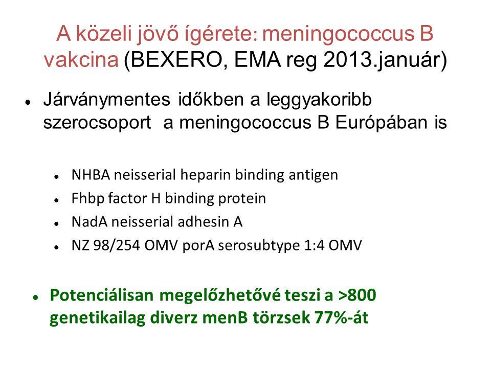 A közeli jövő ígérete : meningococcus B vakcina (BEXERO, EMA reg 2013.január)  Járványmentes időkben a leggyakoribb szerocsoport a meningococcus B Európában is  NHBA neisserial heparin binding antigen  Fhbp factor H binding protein  NadA neisserial adhesin A  NZ 98/254 OMV porA serosubtype 1:4 OMV  Potenciálisan megelőzhetővé teszi a >800 genetikailag diverz menB törzsek 77%-át