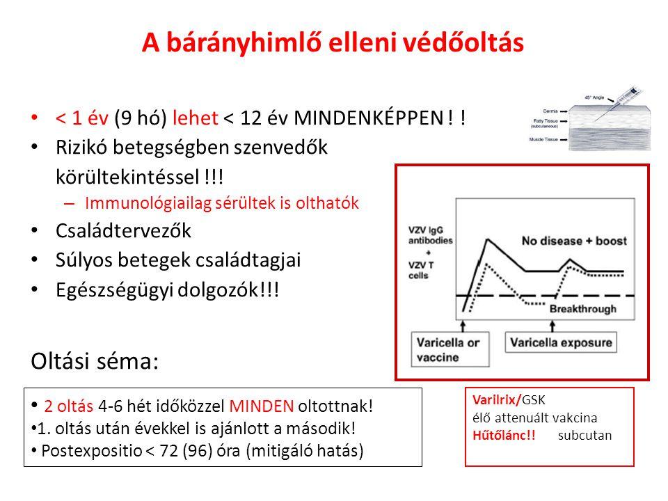 A bárányhimlő elleni védőoltás • < 1 év (9 hó) lehet < 12 év MINDENKÉPPEN ! ! • Rizikó betegségben szenvedők körültekintéssel !!! – Immunológiailag sé