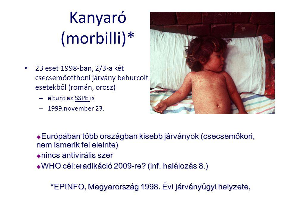 Kanyaró (morbilli)* • 23 eset 1998-ban, 2/3-a két csecsemőotthoni járvány behurcolt esetekből (román, orosz) – eltünt az SSPE is – 1999.november 23.