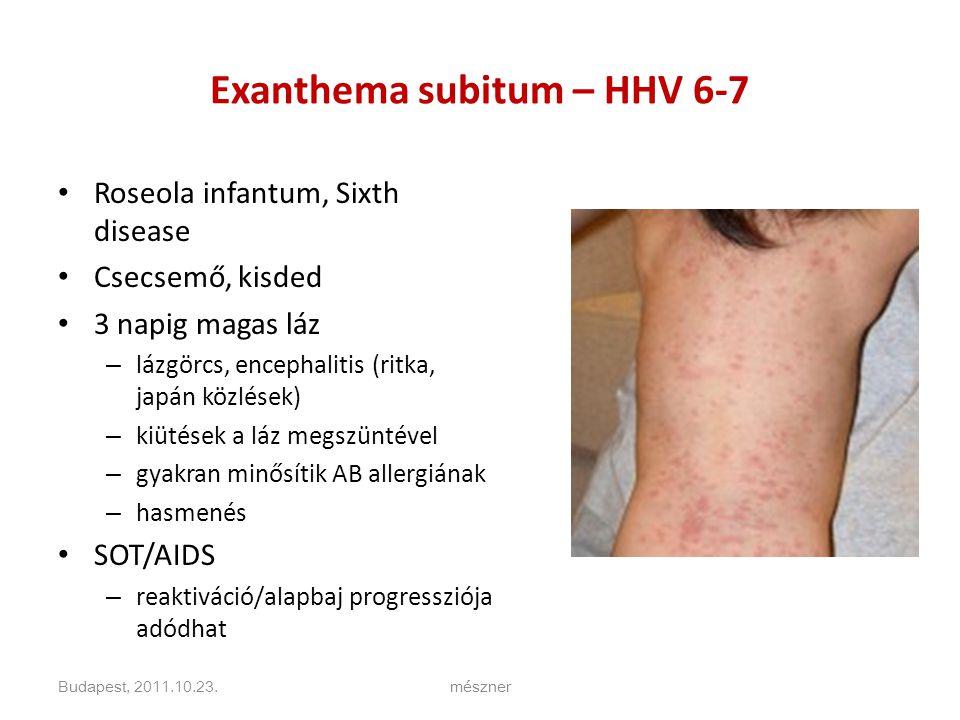 Exanthema subitum – HHV 6-7 • Roseola infantum, Sixth disease • Csecsemő, kisded • 3 napig magas láz – lázgörcs, encephalitis (ritka, japán közlések) – kiütések a láz megszüntével – gyakran minősítik AB allergiának – hasmenés • SOT/AIDS – reaktiváció/alapbaj progressziója adódhat Budapest, 2011.10.23.mészner