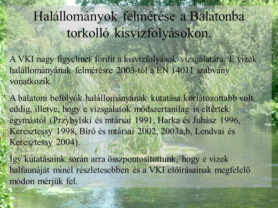 Halállományok felmérése a Balatonba torkolló kisvízfolyásokon. A VKI nagy figyelmet fordít a kisvízfolyások vizsgálatára. E vizek halállományának felm