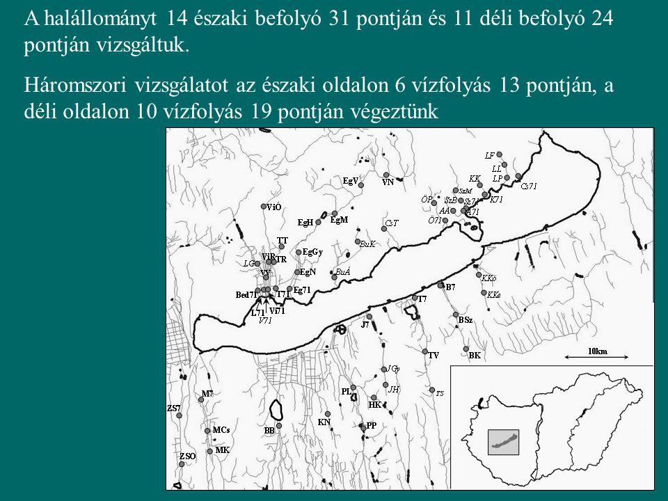 A halállományt 14 északi befolyó 31 pontján és 11 déli befolyó 24 pontján vizsgáltuk. Háromszori vizsgálatot az északi oldalon 6 vízfolyás 13 pontján,
