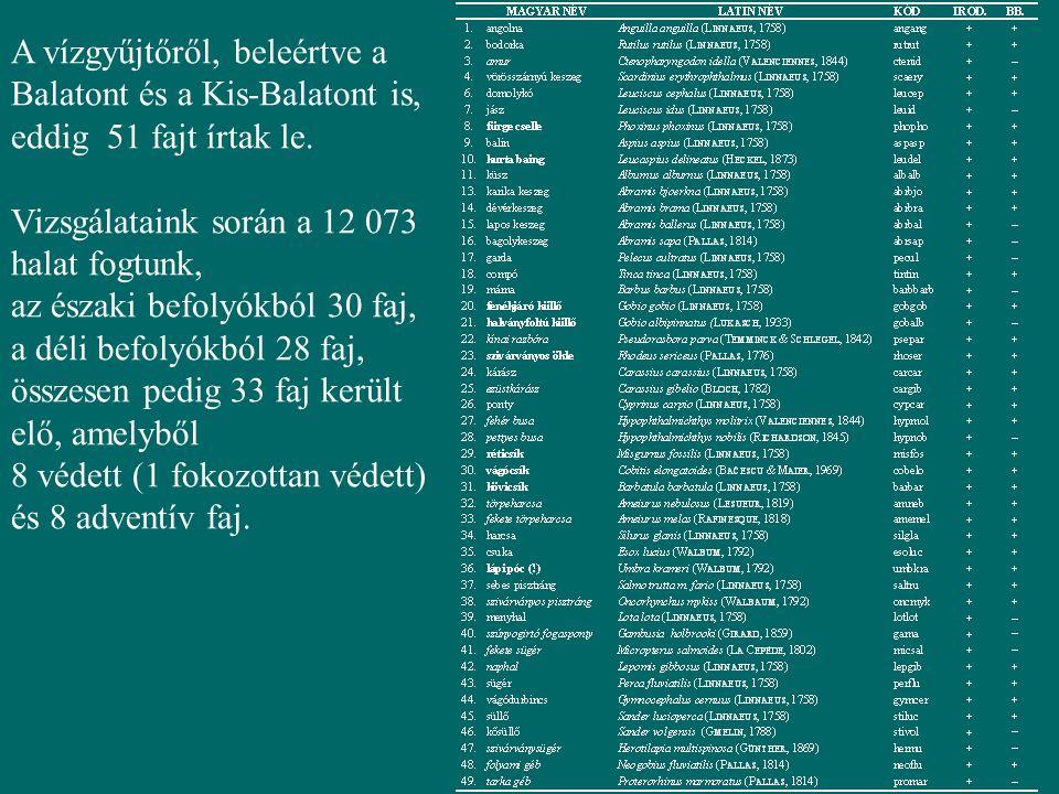 A vízgyűjtőről, beleértve a Balatont és a Kis-Balatont is, eddig 51 fajt írtak le.