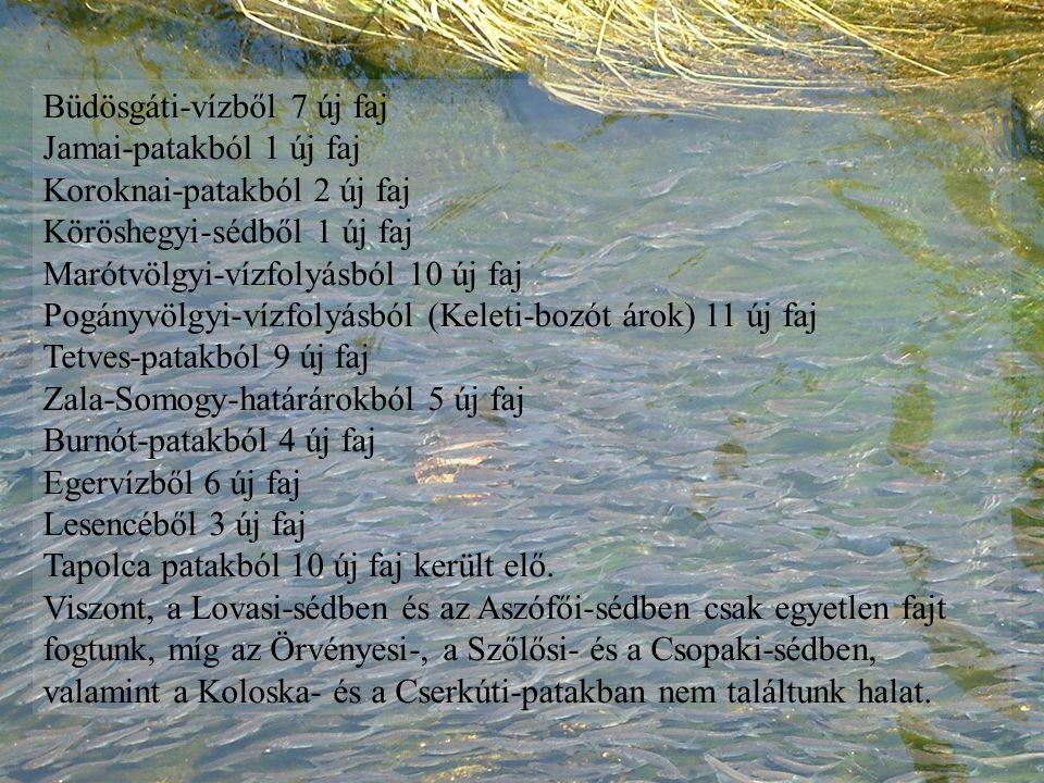 Büdösgáti-vízből 7 új faj Jamai-patakból 1 új faj Koroknai-patakból 2 új faj Köröshegyi-sédből 1 új faj Marótvölgyi-vízfolyásból 10 új faj Pogányvölgyi-vízfolyásból (Keleti-bozót árok) 11 új faj Tetves-patakból 9 új faj Zala-Somogy-határárokból 5 új faj Burnót-patakból 4 új faj Egervízből 6 új faj Lesencéből 3 új faj Tapolca patakból 10 új faj került elő.