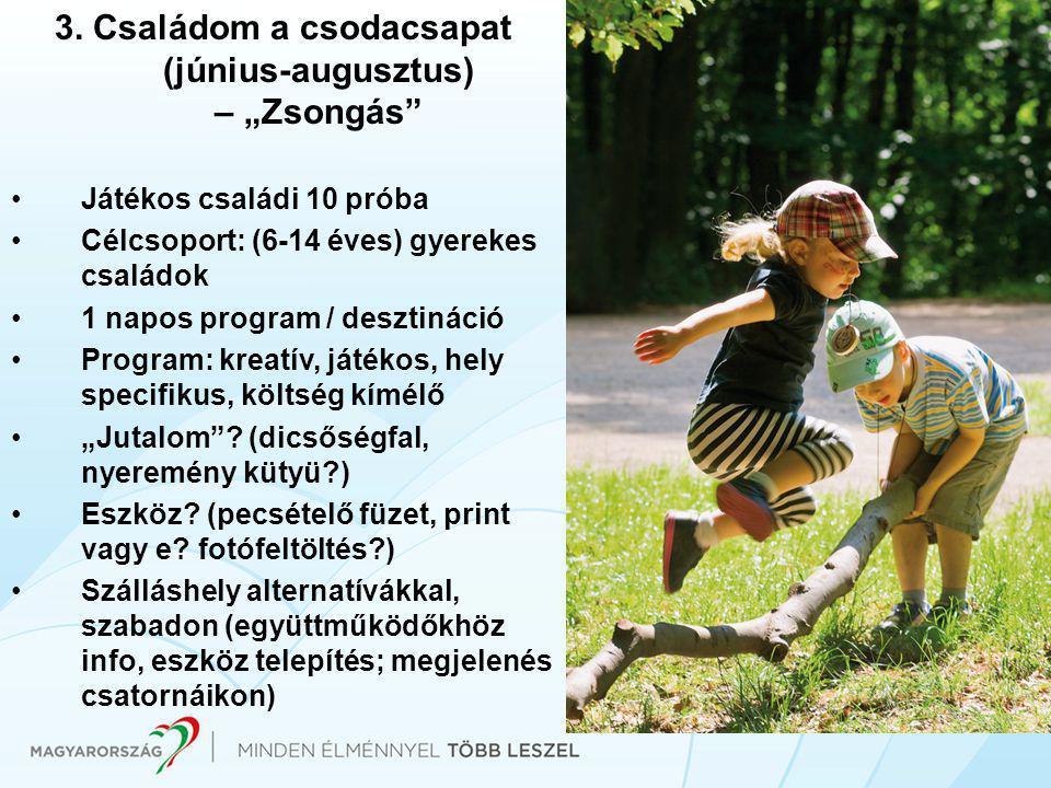 """3. Családom a csodacsapat (június-augusztus) – """"Zsongás"""" •Játékos családi 10 próba •Célcsoport: (6-14 éves) gyerekes családok •1 napos program / deszt"""