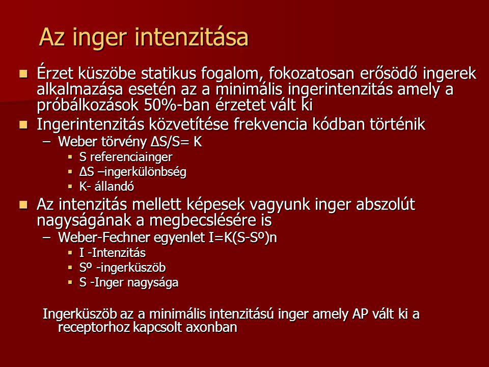 Az inger intenzitása  Érzet küszöbe statikus fogalom, fokozatosan erősödő ingerek alkalmazása esetén az a minimális ingerintenzitás amely a próbálkoz