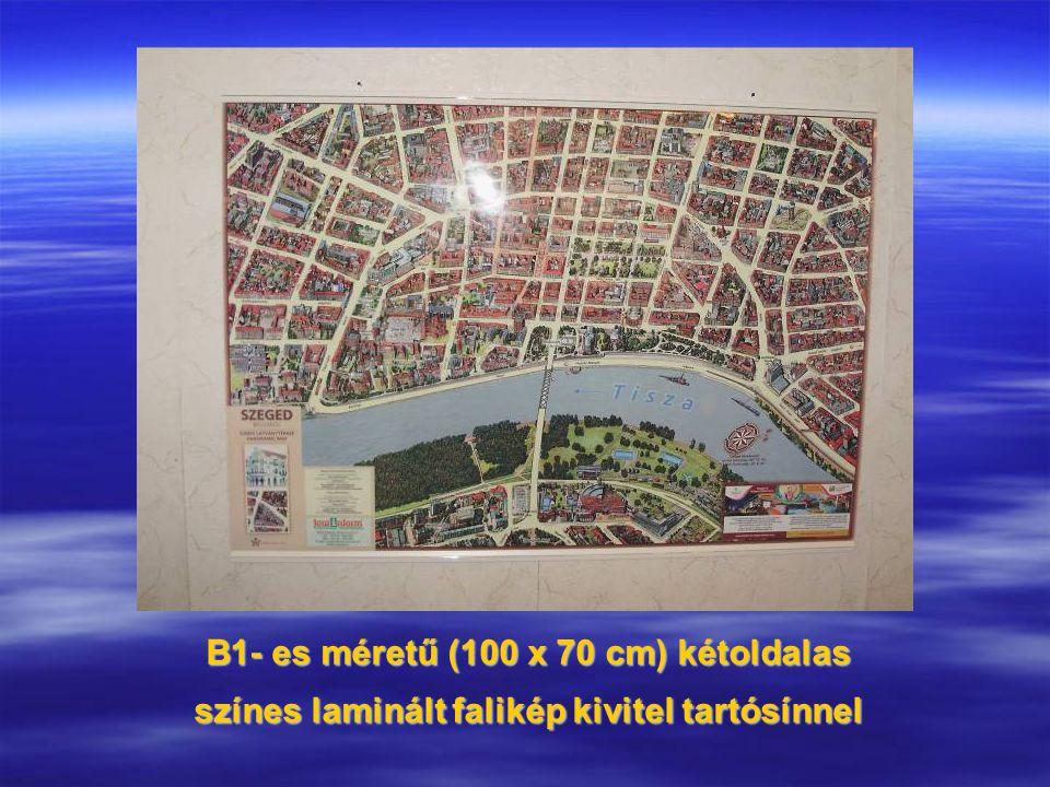 B1- es méretű (100 x 70 cm) kétoldalas színes laminált falikép kivitel tartósínnel