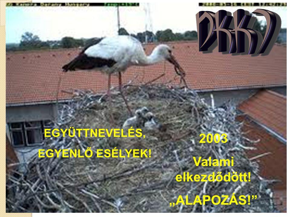"""2003 Valami elkezdődött! """"ALAPOZÁS!"""" EGYÜTTNEVELÉS, EGYENLŐ ESÉLYEK!"""