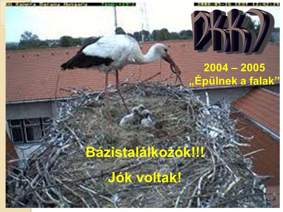 """2004 – 2005 """"Épülnek a falak Bázistalálkozók!!! Jók voltak!"""