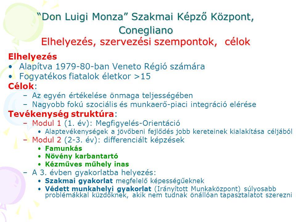 Don Luigi Monza Szakmai Képző Központ, Conegliano Elhelyezés, szervezési szempontok, célok Elhelyezés •Alapítva 1979-80-ban Veneto Régió számára •Fogyatékos fiatalok életkor >15 Célok: –Az egyén értékelése önmaga teljességében –Nagyobb fokú szociális és munkaerő-piaci integráció elérése Tevékenység struktúra: –Modul 1 (1.