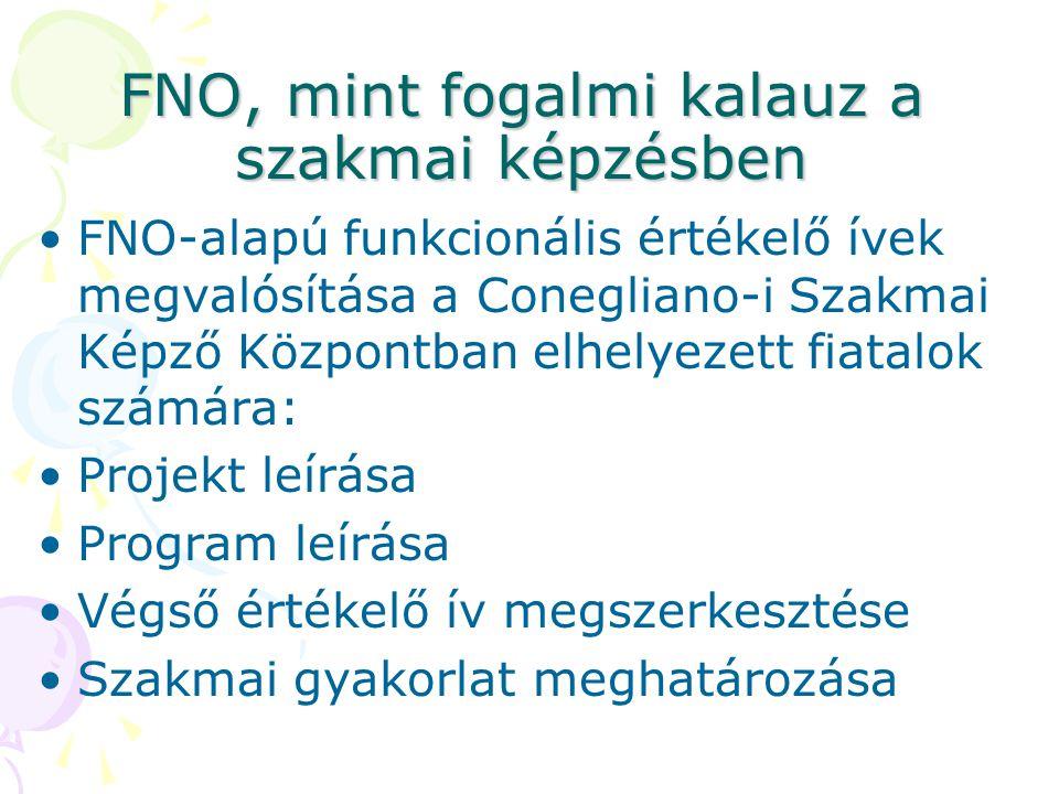 FNO, mint fogalmi kalauz a szakmai képzésben •FNO-alapú funkcionális értékelő ívek megvalósítása a Conegliano-i Szakmai Képző Központban elhelyezett fiatalok számára: •Projekt leírása •Program leírása •Végső értékelő ív megszerkesztése •Szakmai gyakorlat meghatározása