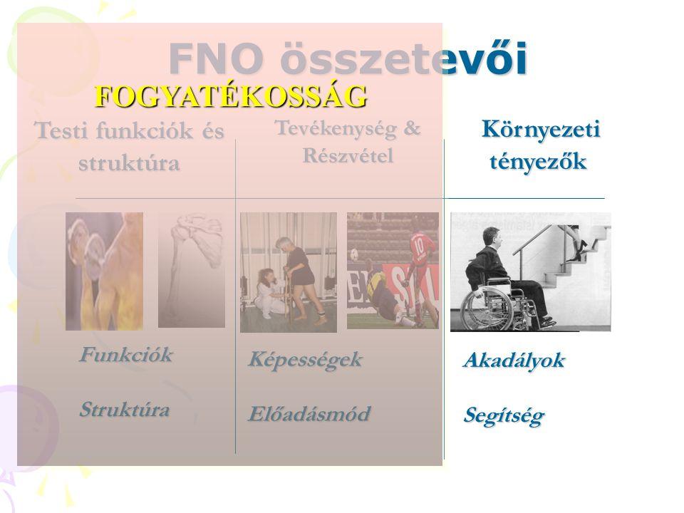 FNO összetevői Testi funkciók és struktúra Tevékenység & Részvétel Környezeti tényezők Környezeti tényezők AkadályokSegítség FunkciókStruktúra KépességekElőadásmód FOGYATÉKOSSÁGFOGYATÉKOSSÁG
