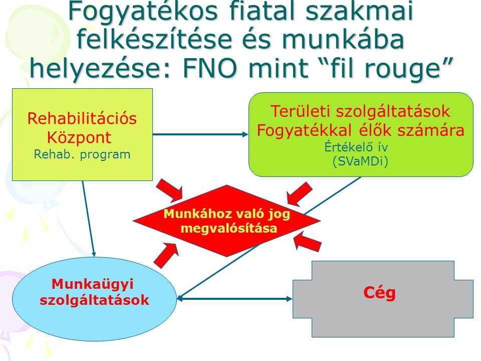 Fogyatékos fiatal szakmai felkészítése és munkába helyezése: FNO mint fil rouge Rehabilitációs Központ Rehab.