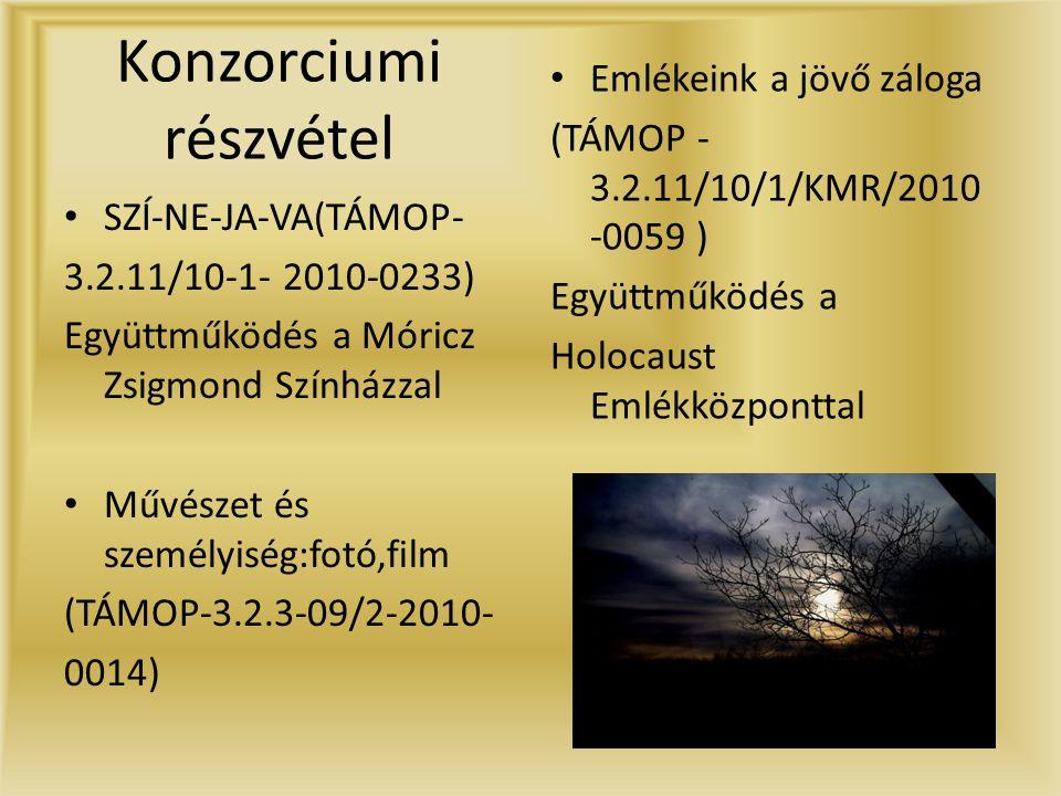 Konzorciumi részvétel • SZÍ-NE-JA-VA(TÁMOP- 3.2.11/10-1- 2010-0233) Együttműködés a Móricz Zsigmond Színházzal • Művészet és személyiség:fotó,film (TÁMOP-3.2.3-09/2-2010- 0014) • Emlékeink a jövő záloga (TÁMOP - 3.2.11/10/1/KMR/2010 -0059 ) Együttműködés a Holocaust Emlékközponttal