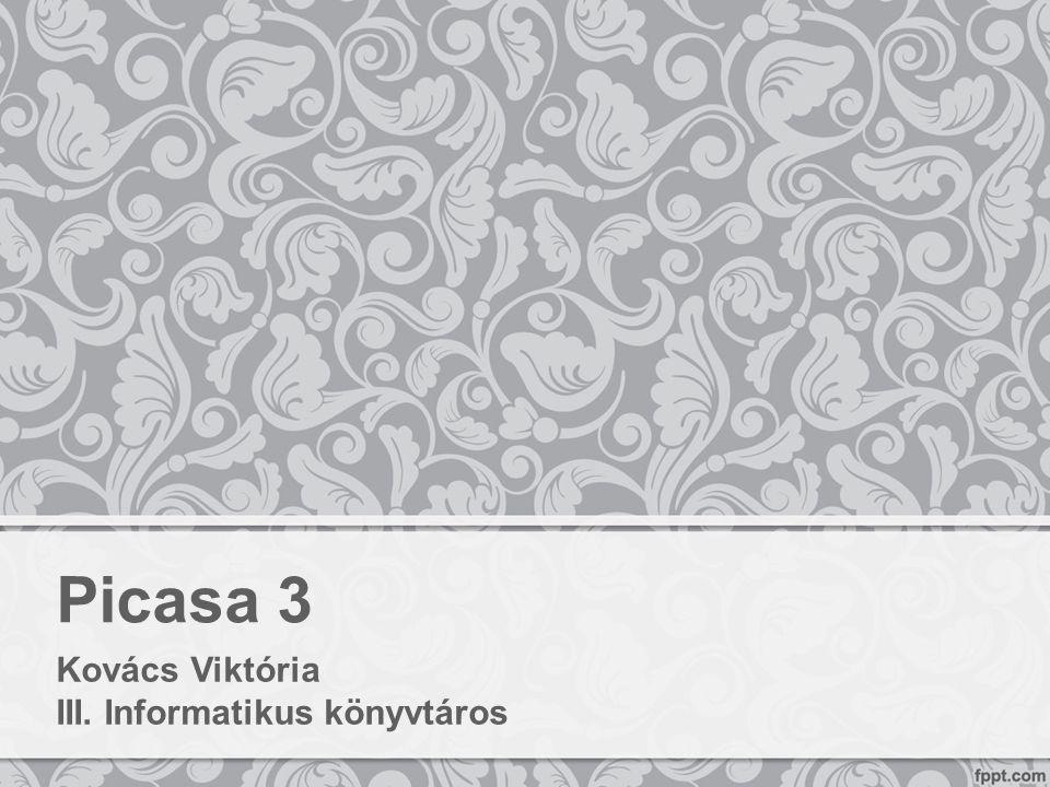 Picasa 3 Kovács Viktória III. Informatikus könyvtáros