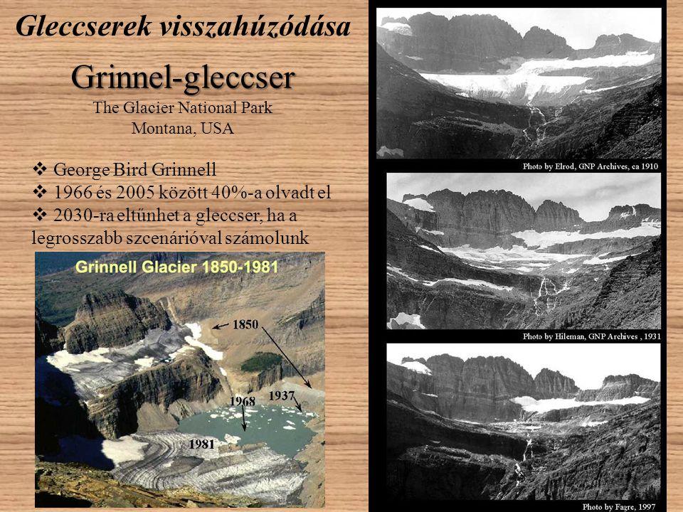 Gleccserek visszahúzódása Grinnel-gleccser The Glacier National Park Montana, USA  George Bird Grinnell  1966 és 2005 között 40%-a olvadt el  2030-