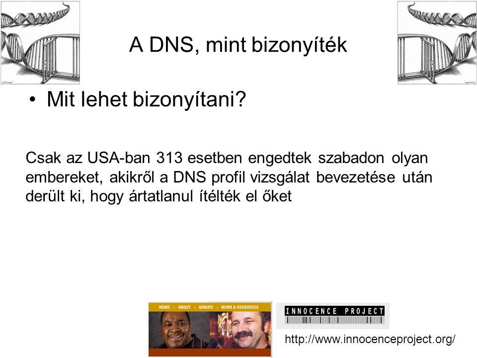 A DNS, mint bizonyíték •Mit lehet bizonyítani? http://www.innocenceproject.org/ Csak az USA-ban 313 esetben engedtek szabadon olyan embereket, akikről