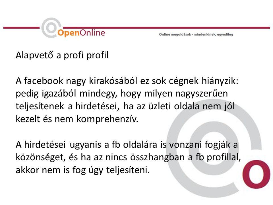 Alapvető a profi profil A facebook nagy kirakósából ez sok cégnek hiányzik: pedig igazából mindegy, hogy milyen nagyszerűen teljesítenek a hirdetései, ha az üzleti oldala nem jól kezelt és nem komprehenzív.
