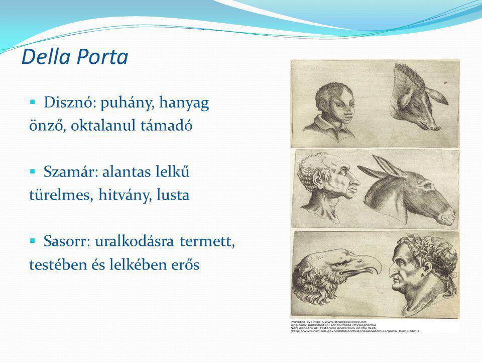 Della Porta  Disznó: puhány, hanyag önző, oktalanul támadó  Szamár: alantas lelkű türelmes, hitvány, lusta  Sasorr: uralkodásra termett, testében é