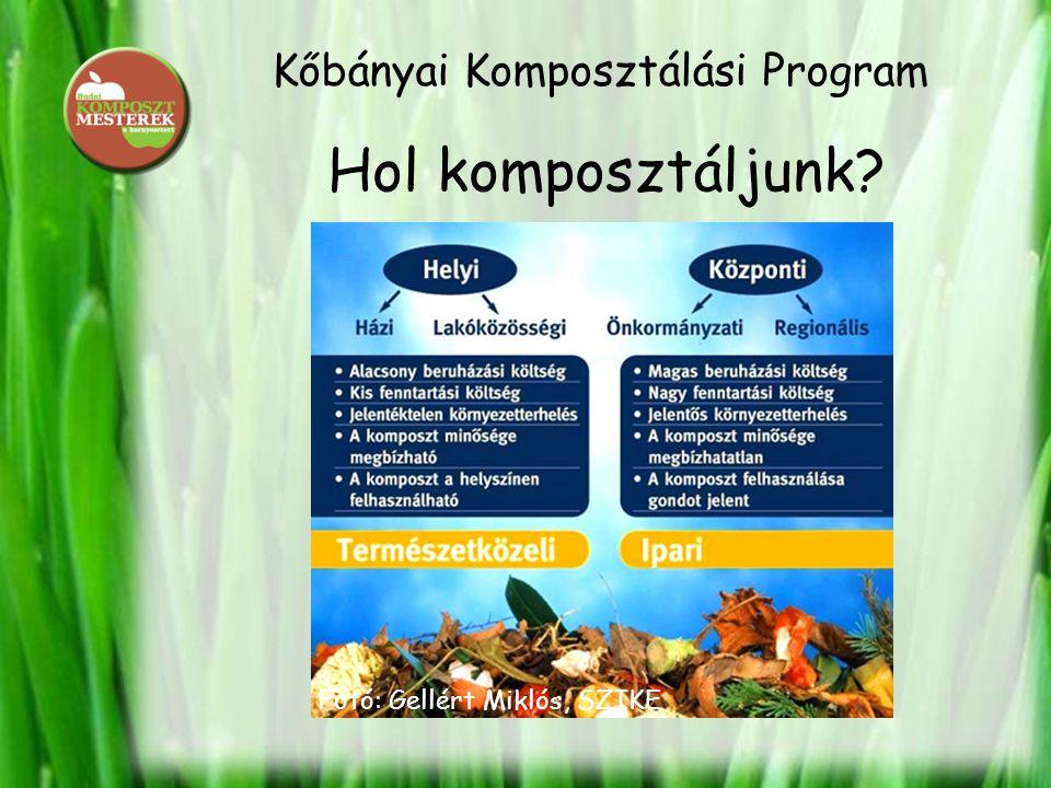 Kőbányai Komposztálási Program Hol komposztáljunk? Fotó: Gellért Miklós, SZIKE
